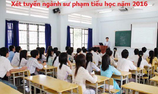 nganh-su-pham-tieu-hoc-dao-tao-chat-luong